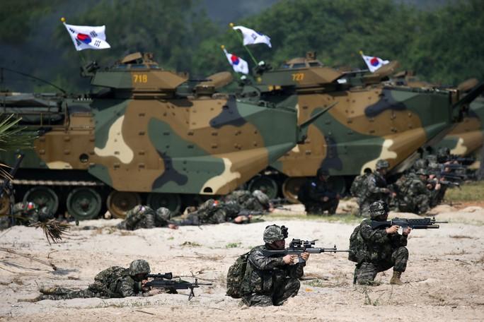 Cận cảnh Mỹ và 28 nước châu Á tập trận Hổ mang vàng - Ảnh 9.