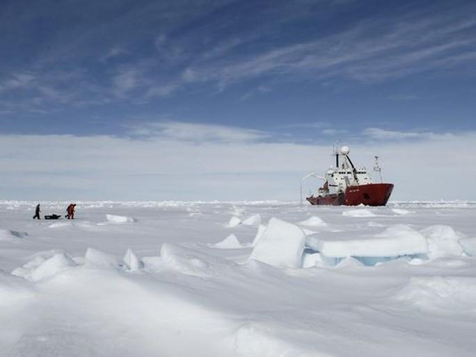 Băng nứt hé lộ thế giới chưa từng biết ở Nam Cực - Ảnh 2.