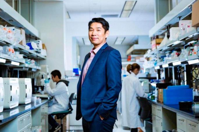 Trông chờ robot ADN siêu nhỏ diệt ung thư - Ảnh 1.