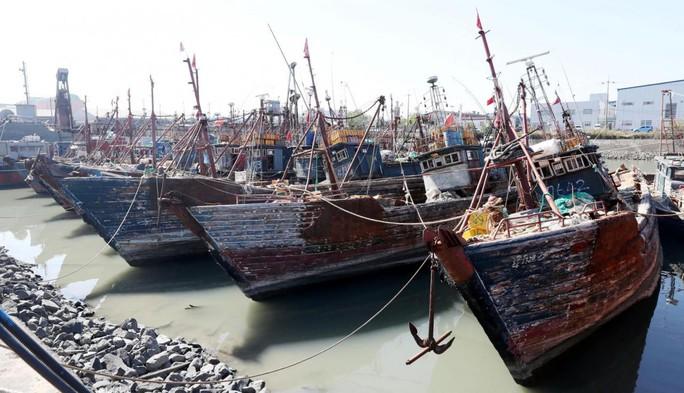 Tàu cá Trung Quốc lộng hành: Chạm trán chết người - Ảnh 1.