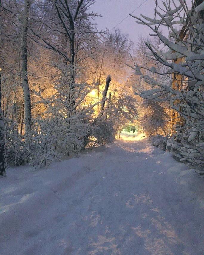 Moscow hứng chịu lượng tuyết rơi trăm năm mới có một lần - Ảnh 2.