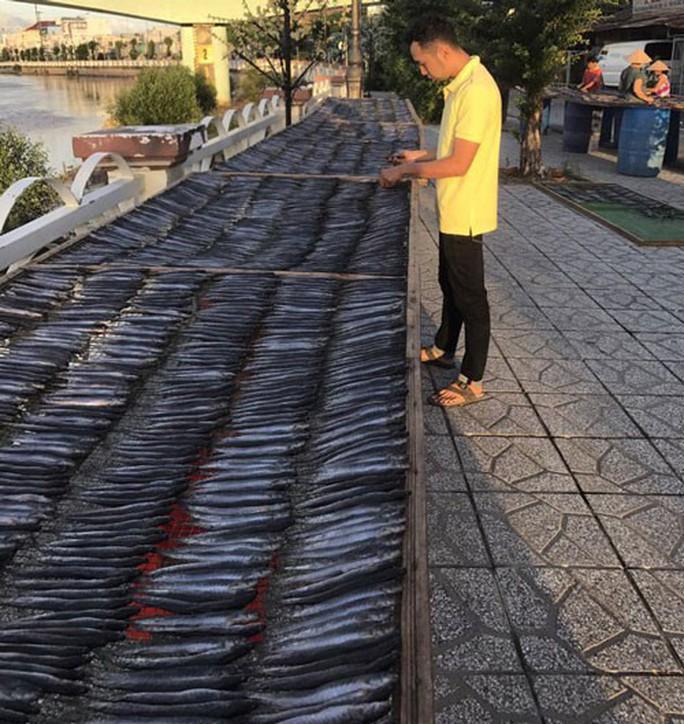 Giáp Tết, người nuôi cá kèo lao đao - Ảnh 1.