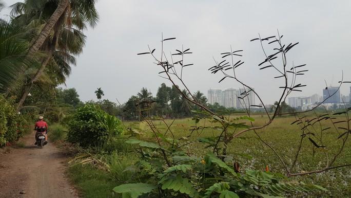 Khu dân dã kỳ lạ ở Sài Gòn - Ảnh 1.