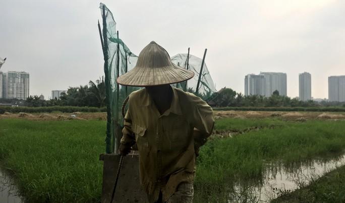 Khu dân dã kỳ lạ ở Sài Gòn - Ảnh 4.