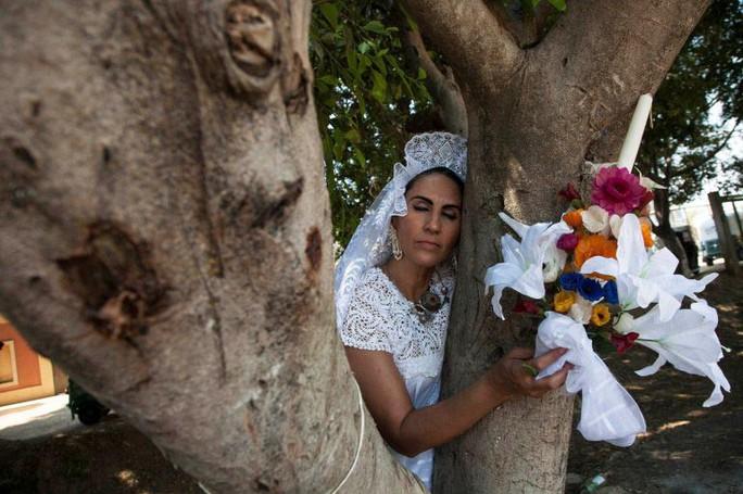 Cưới cây làm chồng - Ảnh 1.
