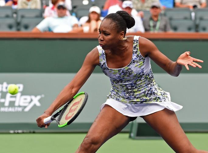 Simona Halep và Venus Williams thẳng tiến vào tứ kết - Ảnh 1.