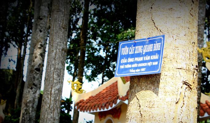 Đình Tân Thông ngày nguyên Thủ tướng Phan Văn Khải đi xa - Ảnh 8.