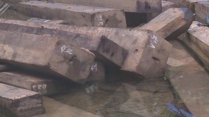 Phát hiện vụ xẻ thịt rừng phòng hộ lớn nhất tỉnh Quảng Bình - Ảnh 4.