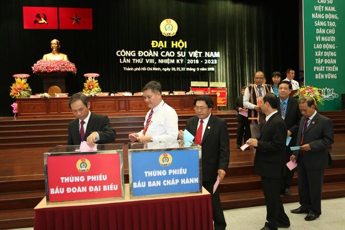 Công đoàn Cao su Việt Nam: 5 năm, kết nạp 20.638 đoàn viên - Ảnh 1.