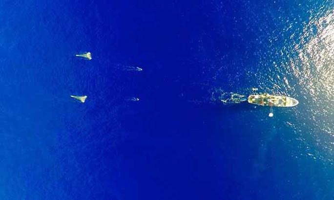 Đảo rác thải bằng diện tích 3 nước trên Thái Bình Dương - Ảnh 1.