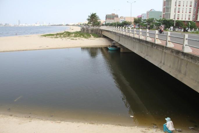 Hơn 3 km biển Đà Nẵng đổi màu sẫm và bốc mùi hôi - Ảnh 8.
