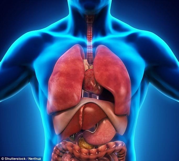 Phát hiện mạng chất lỏng là đường ung thư di căn - Ảnh 1.