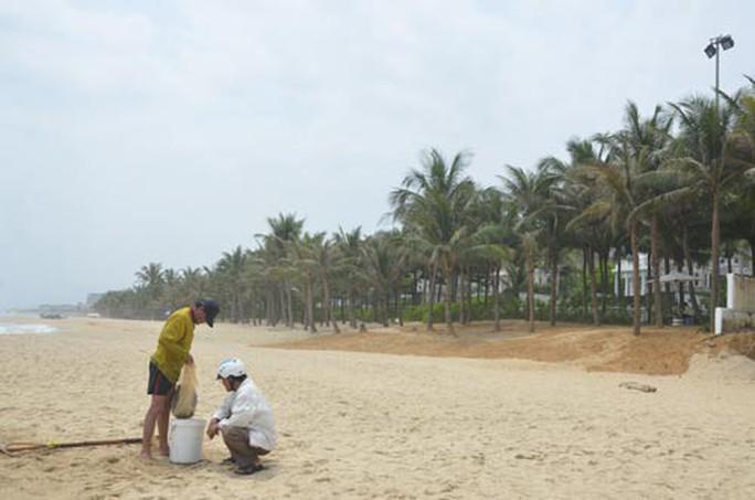Bãi biển miền Trung bị xẻ thịt: Đường của dân thành của resort - Ảnh 2.