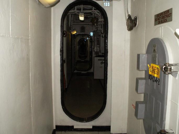 Tàu sân bay Mỹ đến Việt Nam: Đại bàng vàng chôn xác Bin Laden - Ảnh 10.