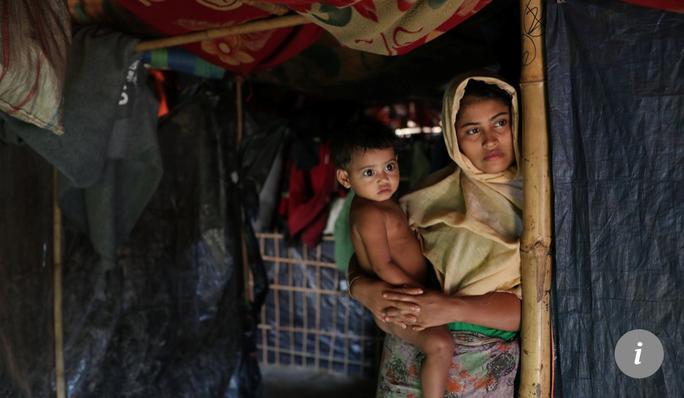 Đi kiếm thức ăn, voi giết chết 10 người tị nạn Rohingya - Ảnh 2.