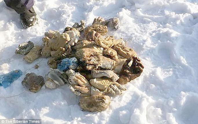 Nga: 54 bàn tay người bị chặt đứt lìa gần biên giới Trung Quốc - Ảnh 1.