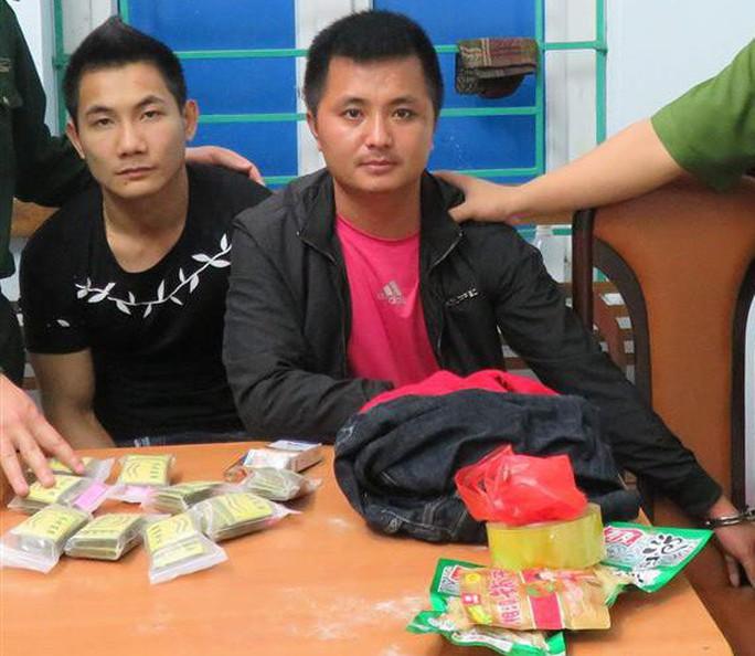 Vận chuyển 179 gói ma túy lạ đông trùng cho người Trung Quốc - Ảnh 1.