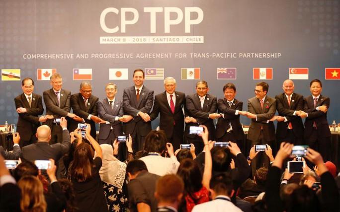 Ngân hàng Thế giới nhận định về tác động của CPTPP tới Việt Nam - Ảnh 1.