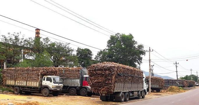 Niêm phong nhà máy đường gây ô nhiễm môi trường - Ảnh 2.