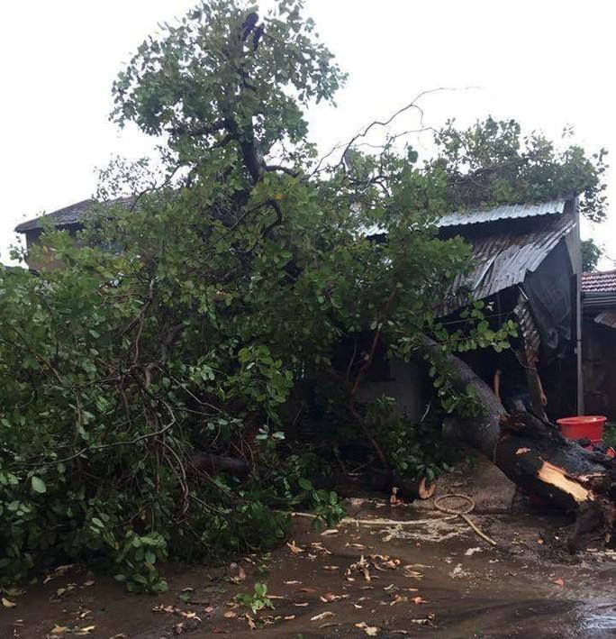Mưa đá, lốc xoáy khiến hàng trăm ngôi nhà sập, nhiều người bị thương - Ảnh 1.