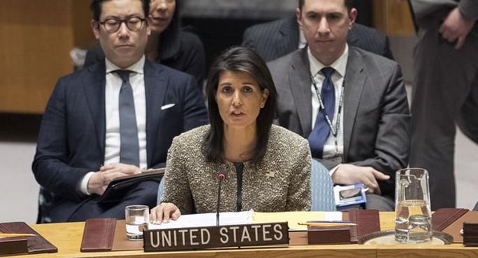 Đại sứ Mỹ tại LHQ: Mỹ đã nạp đạn và lên cò với Syria - Ảnh 1.