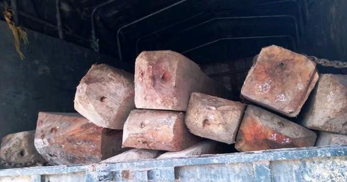 Nửa đêm, phát hiện xe tải lén lút chở gỗ lậu - Ảnh 1.