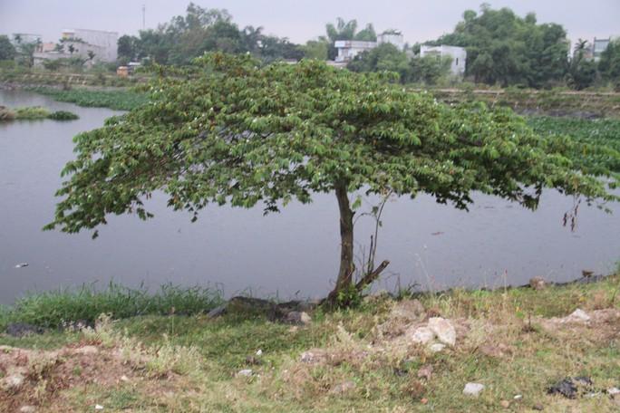 Phát hiện thi thể nam thanh niên nghi treo cổ tự tử cạnh bờ hồ - Ảnh 2.