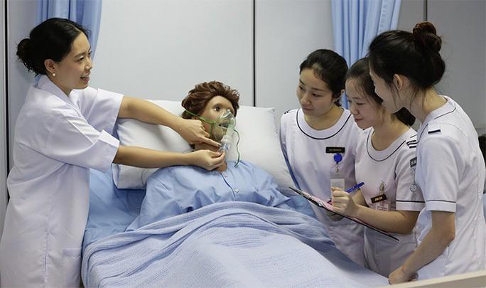 Cơ hội sang Nhật Bản làm điều dưỡng, hộ lý - Ảnh 2.