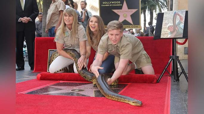 Người săn cá sấu quá cố bất ngờ được nhận sao - Ảnh 2.