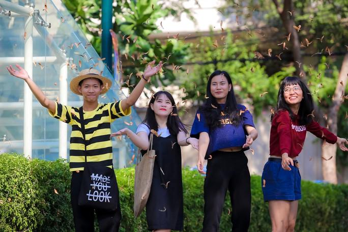 Sài Gòn đẹp mê hồn với mùa chò nâu xoay tít - Ảnh 6.