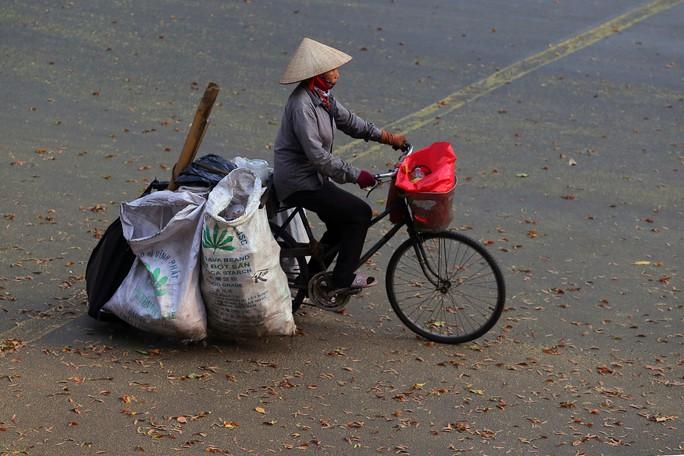 Sài Gòn đẹp mê hồn với mùa chò nâu xoay tít - Ảnh 10.