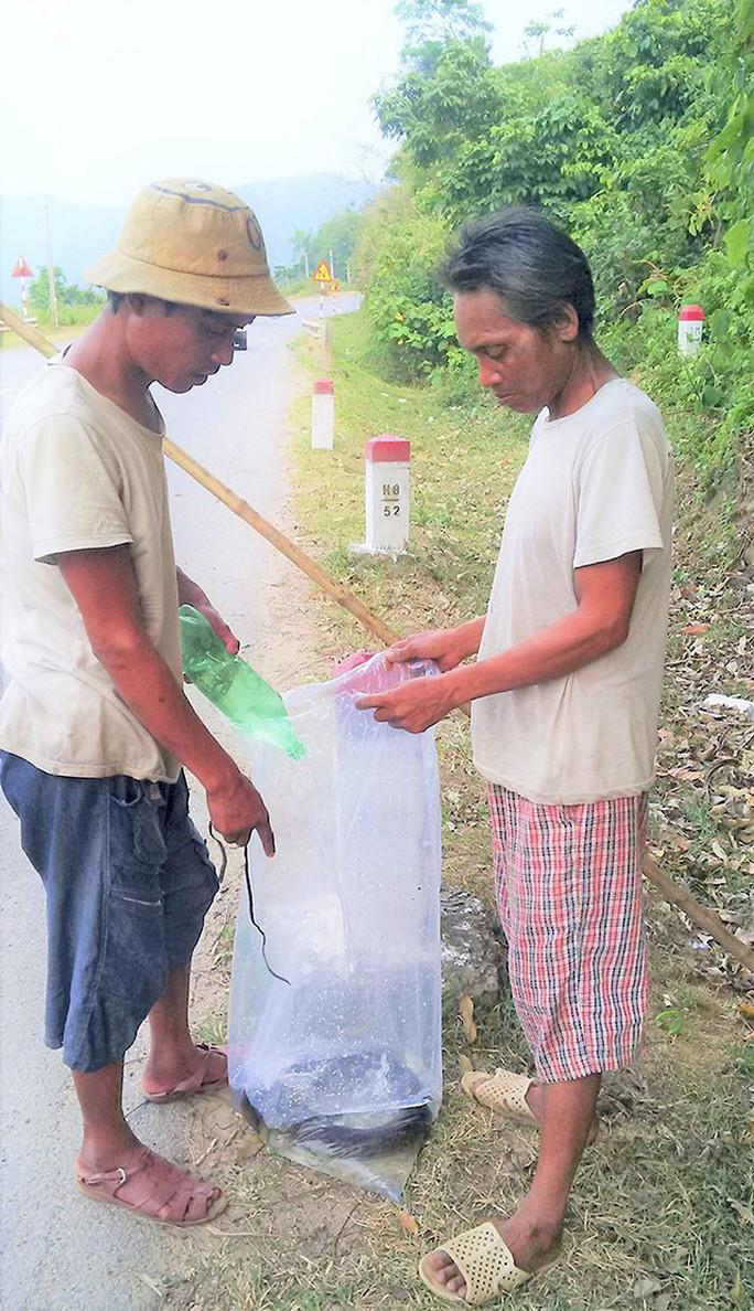 Theo rái cá đi săn cá trên sông Đakrông - Ảnh 1.