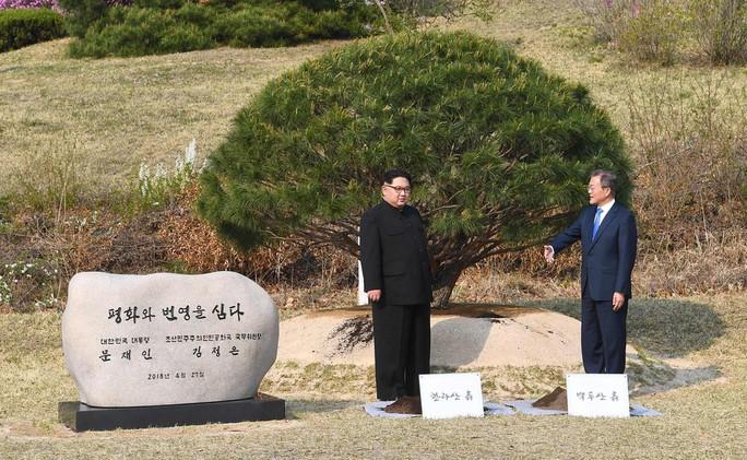 Đằng sau câu chuyện ông Kim Jong-un vào thang máy - Ảnh 4.