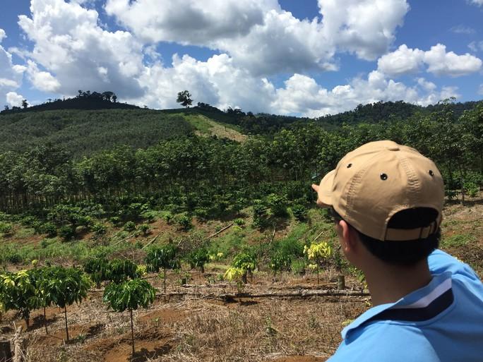 Đắk Nông: Còn nhiều cán bộ tiếp tục bị xử lý vì liên quan đất rừng - Ảnh 2.