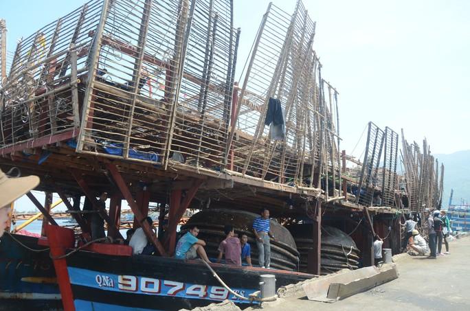 Chủ tàu cá chấp nhận lỗ hàng trăm triệu để lai dắt tàu bạn vào bờ - Ảnh 2.
