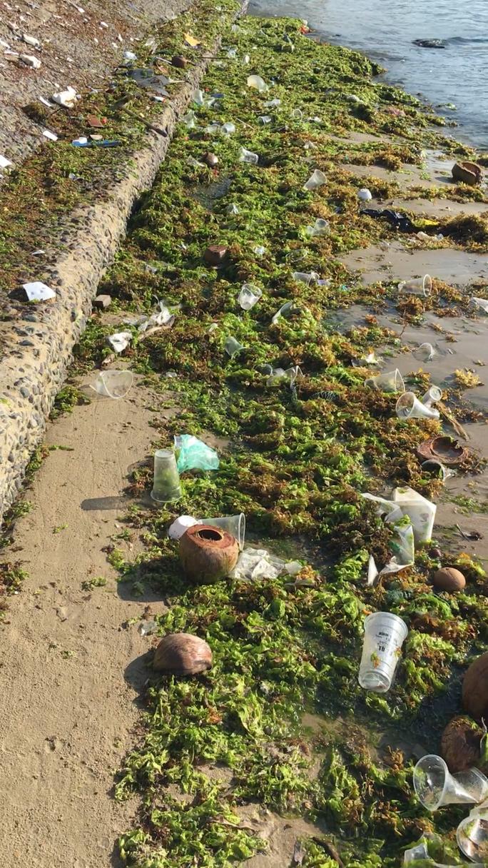 Du khách nước ngoài dọn rác biển Nha Trang vì không chịu nổi - Ảnh 2.