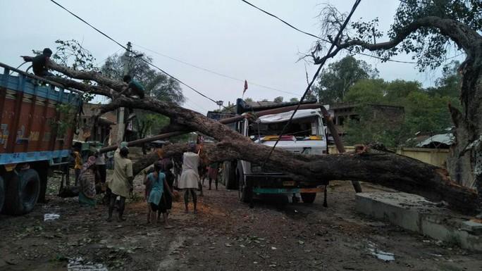 Ấn Độ: Bão bụi mù mịt càn quét, hơn 90 người thiệt mạng - Ảnh 2.
