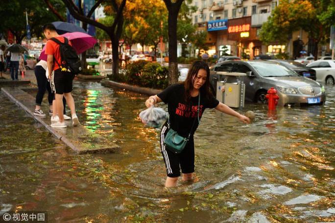"""""""Mưa"""" bạch tuộc, sao biển và tôm ở Trung Quốc - Ảnh 6."""