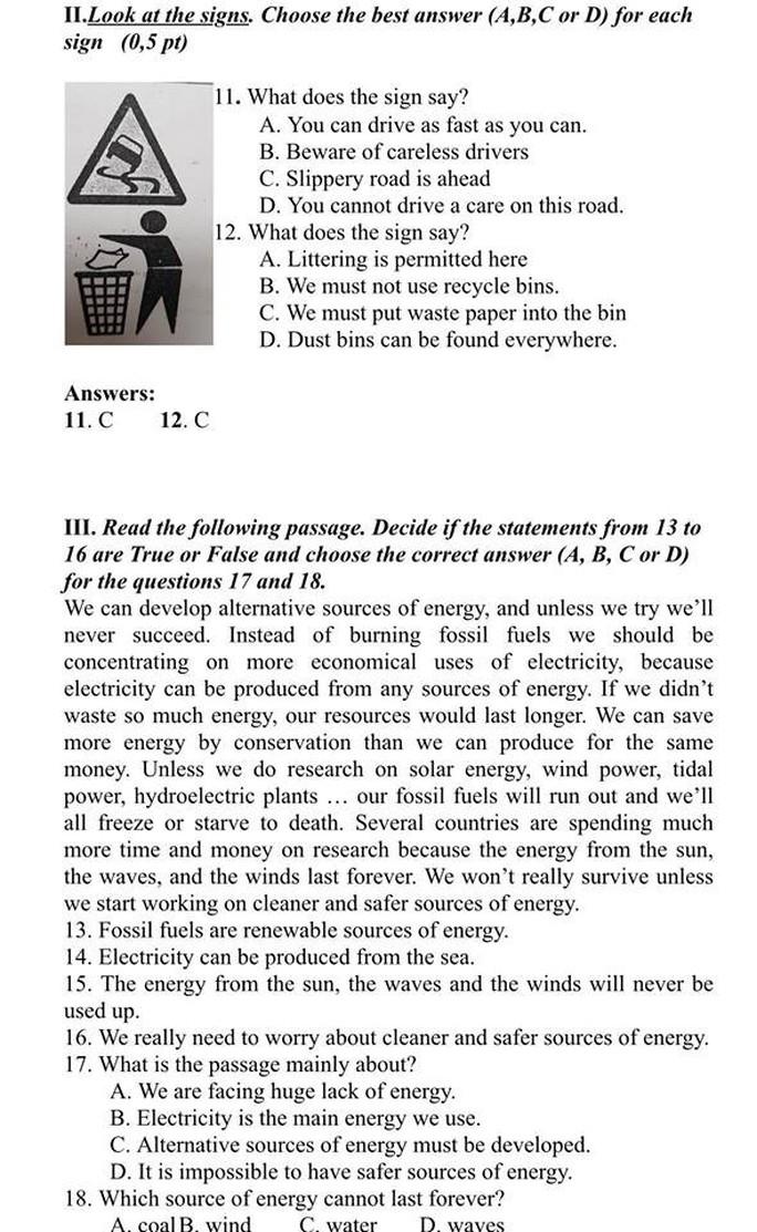 Gợi ý giải đề thi môn tiếng Anh lớp 10 - Ảnh 3.