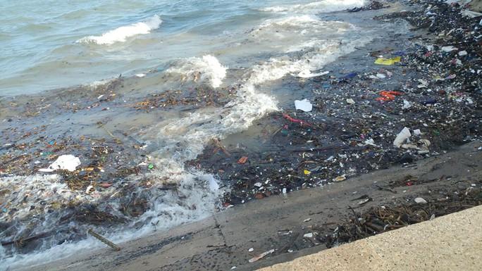 Vũng Tàu: Các bãi tắm lo mất khách vì núi rác từ biển - Ảnh 3.