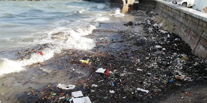 Vũng Tàu: Các bãi tắm lo mất khách vì núi rác từ biển - Ảnh 1.