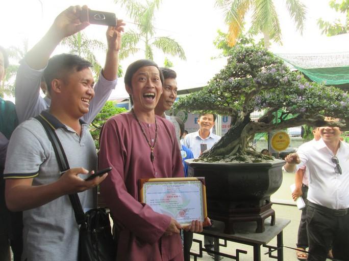 Cây Linh sam 500 triệu của danh hài Hoài Linh đạt giải nhất cuộc thi bonsai - Ảnh 3.