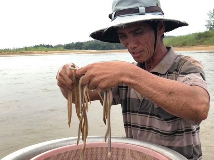 Cao thủ bật mí tuyệt chiêu săn lịch trên sông Trà Khúc - Ảnh 8.