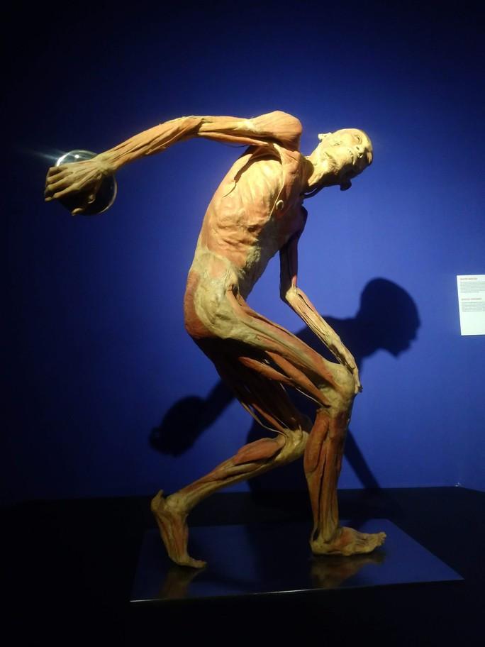 """""""Sự bí ẩn đặc biệt của cơ thể người"""": nghe người chết kể chuyện - Ảnh 2."""