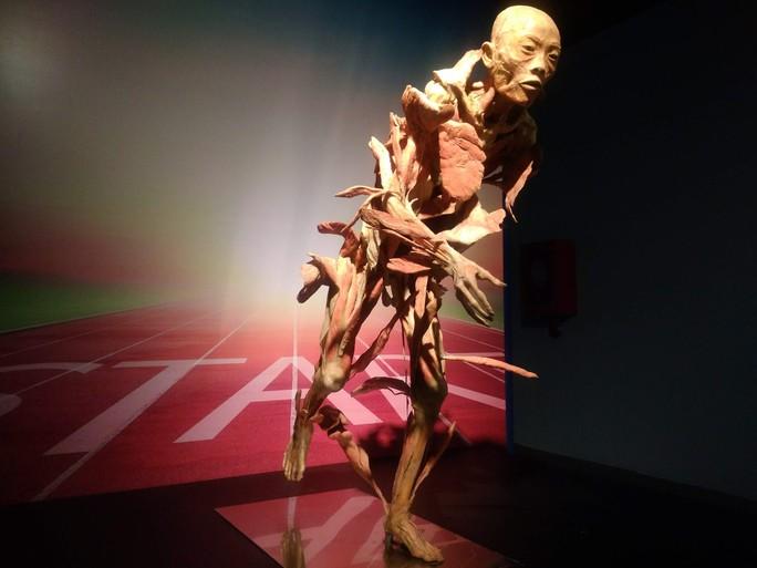 """""""Sự bí ẩn đặc biệt của cơ thể người"""": nghe người chết kể chuyện - Ảnh 8."""