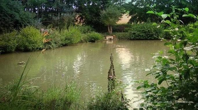 Bình Thuận: Hai ngày, 4 em nhỏ chết đuối trong vườn nhà - Ảnh 1.
