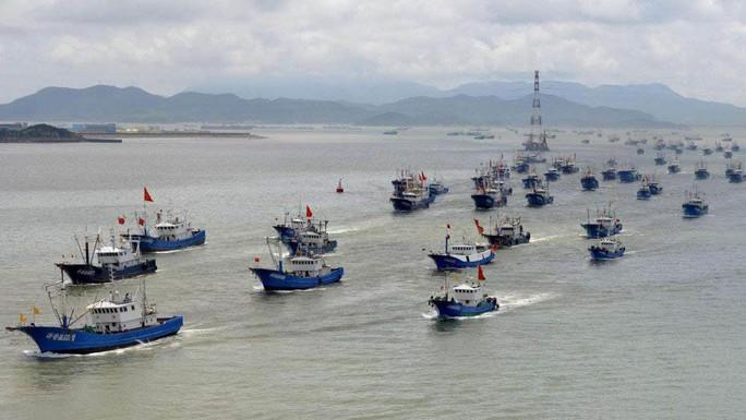 Trung Quốc và nỗi lo tận diệt hải sản - Ảnh 1.