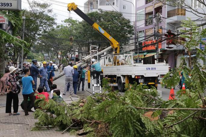 Lốc xoáy nhiều nơi ở Sài Gòn, cây xanh ngã rạp, 3 người trọng thương - Ảnh 12.