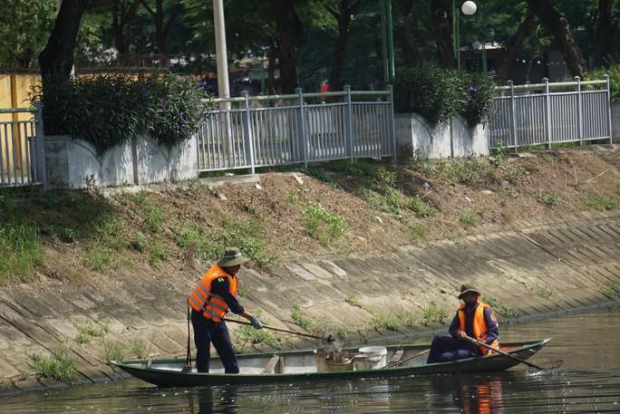 Đà Nẵng: Cá chết nổi lềnh bềnh trên sông Phú Lộc nghi do ô nhiễm - Ảnh 3.