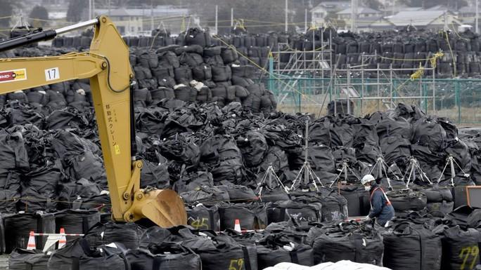Nhật Bản điều tra 4 công ty thuê người Việt khử phóng xạ - Ảnh 1.